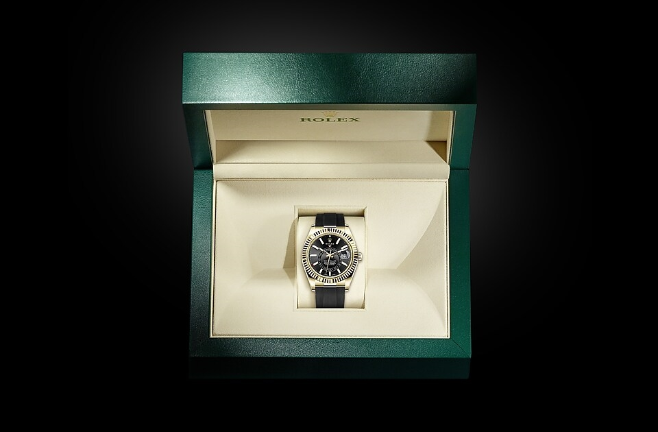watch_assets_in_box_m326238-0009